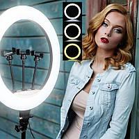 Кольцевая светодиодная селфи-лампа 46см. YQ460B 45W с 3-я держателями для телефона и пультом ДУ