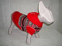 Толстовка трикотажная для кошек Морозко, фото 1