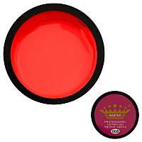 Гель краска для ногтей Master Professional №008, 5 гр.