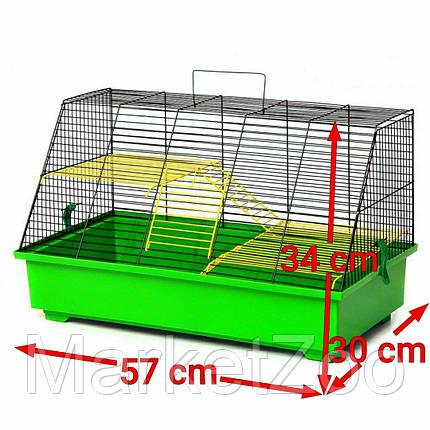 """Клетка """"Щурик"""", размер 57×30×34см, фото 2"""