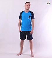 Піжама чоловіча футболка з шортами синя бавовняна літня великих розмірів 44-60р.