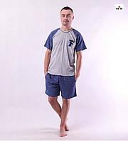 Піжама чоловіча на літо футболка з шортами сіра бавовняна великих розмірів 44-60р.