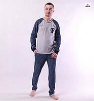 Піжама чоловіча бавовняна літня кофта зі штанами в клітинку сіра 44-60р.
