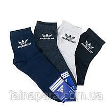 Мужские средние спортивные хлопковые носки Adidas