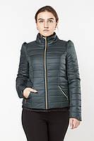 Осенняя женская куртка  Exclusive 2015 зеленый скидка