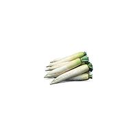 ТИТАН - насіння редьки 250 грам, Kitano Seeds