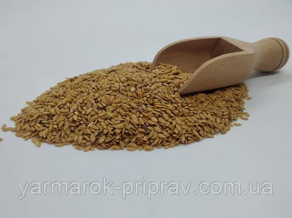 Льон насіння, 100г, фото 2