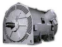 Електродвигун ВАО2-560LB8 (ВАО2 560LB8 630 кВт, 750 об/хв 6кВ), фото 1