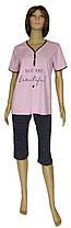 Пижама женская трикотажная, футболка и бриджи 20024 Beautiful коттон Лиловая с темно-синим