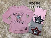 Реглан для девочек, Active Sport, 146,152,158,164 см,  № HZ-8383