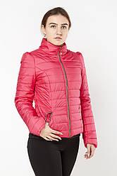 Осенняя женская куртка  Exclusive 2015 розовый скидка