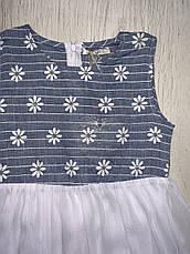 Платья на девочек оптом, F&D, 3/4-7/8 рр., фото 3