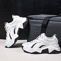 Женские кожаные кроссовки черные белые повседневные демисезон