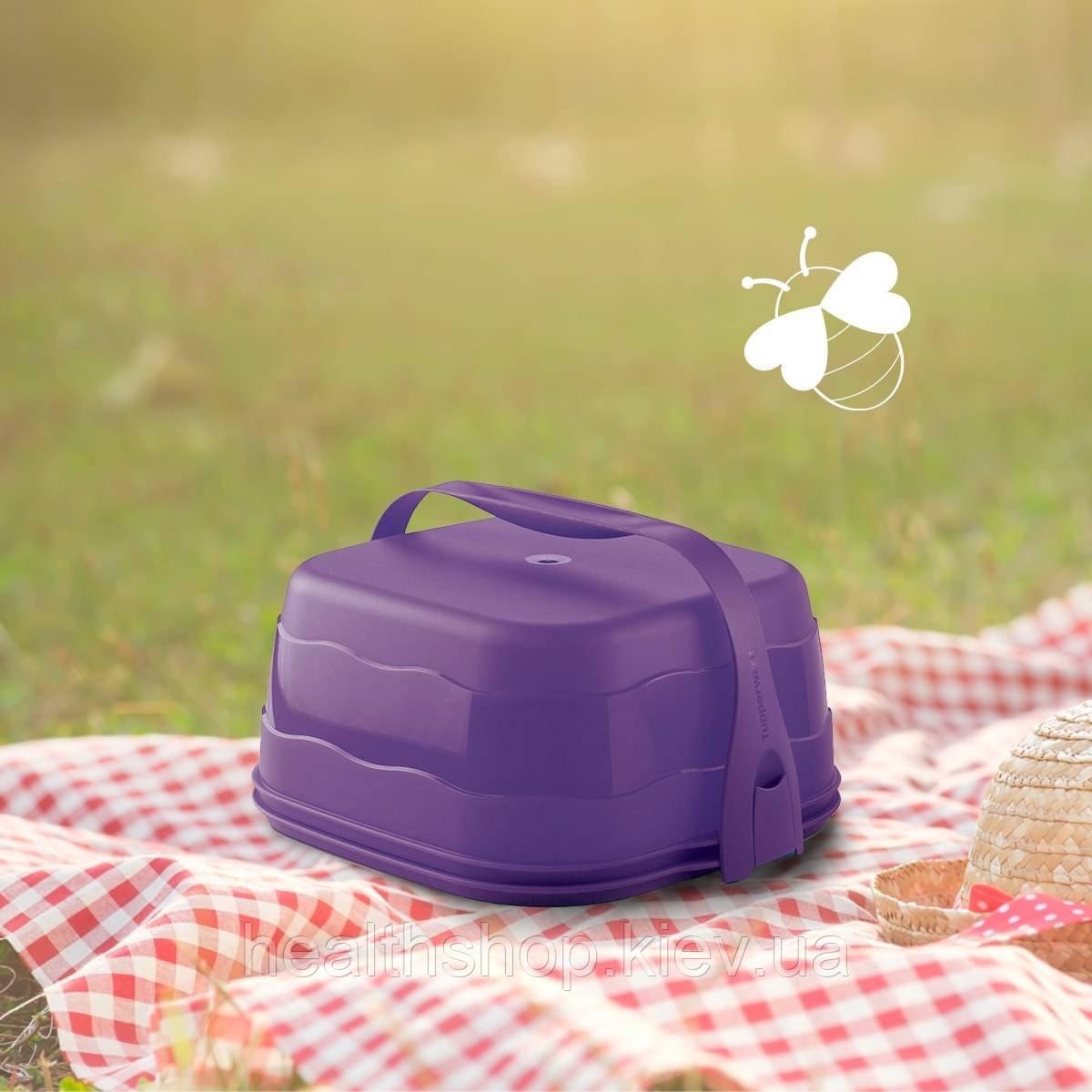 Кондитер «Чарівність» квадратний фіолетовий Tupperware (Оригінал) Тапервер