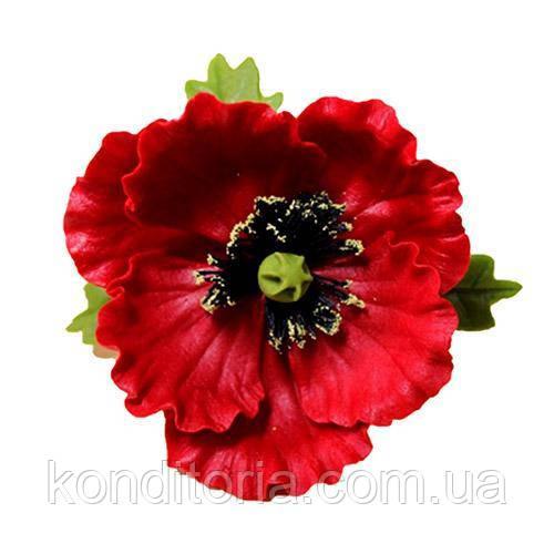 Цукровий квітка мак