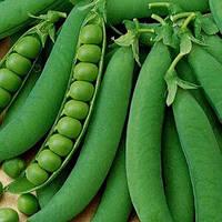 Горох овочевий Джі 12 ваговий (ціна за 1 кг) GSN