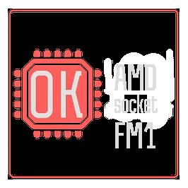 Socket FM1