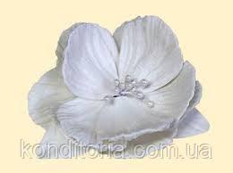 Сахарный цветок пион