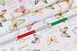 """Поплин шириной 240 см """"Салатовые, розовые бабочки и надписи"""" (№3342), фото 2"""