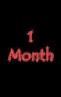 Линзы на один месяц