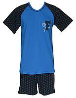 Пижама трикотажная мужская, футболка и шорты 21006 Timmi коттон Бирюзовая с темно-синим