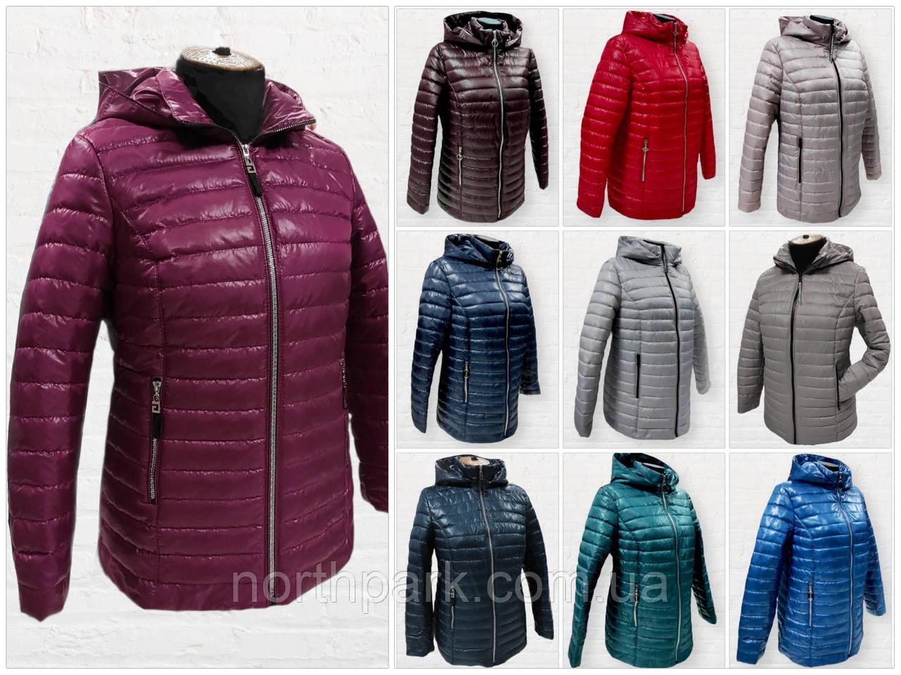 """Жіноча демісезонна коротка куртка великих розмірів """"Віка"""""""