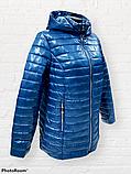"""Жіноча демісезонна коротка куртка великих розмірів """"Віка"""", фото 4"""