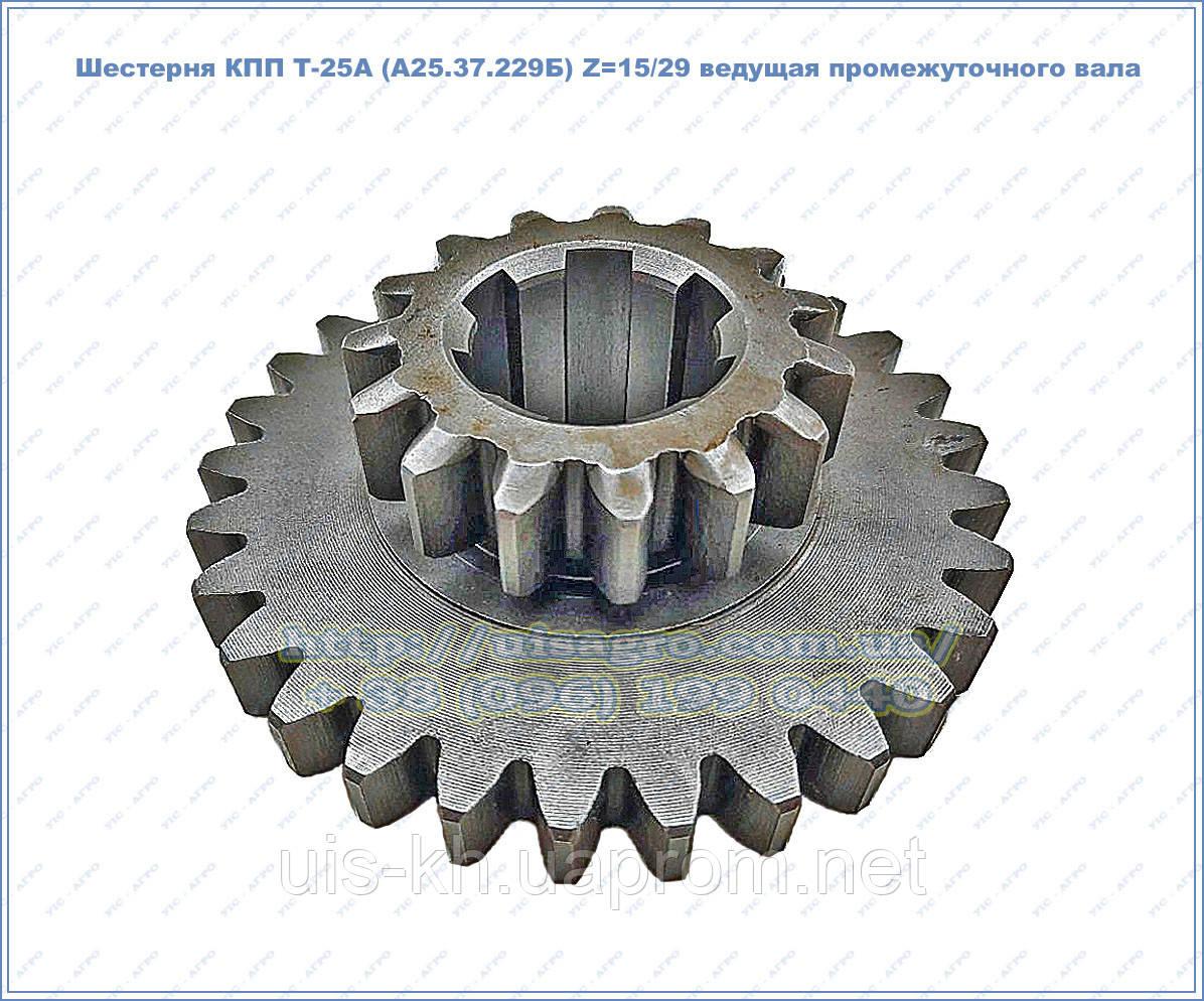Шестерня КПП Т-25А (А25.37.229Б) Z=15/29 ведущая промежуточного (реверса) вала