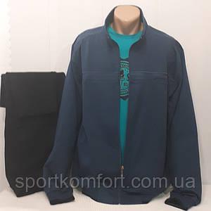 Демісезонний спортивний трикотажний костюм FORE Туреччина бавовна 74 брюки прямі великі розміри