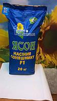 Семена подсолнечника ЯСОН, Ценна на ЯСОН Фракция 3,0-3,25. устойчивый к засухе и болезням. Засухоустойчивый.