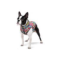 """Waudog Куртка для собак Мультисезонная """"Чудо Жінка Комікс"""""""", розмір L55, 0955-4009"""