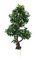 Дерево штучне Фікус Широколистий 170см Три крони