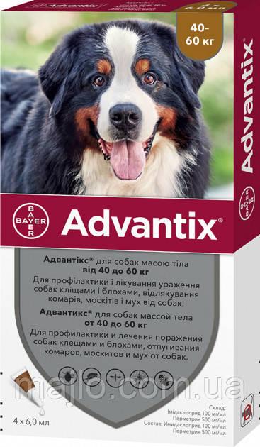 Краплі Bayer Адвантікс від заражень екто паразитами для собак понад 40-60 кг 4 піпетки (4007221048947)
