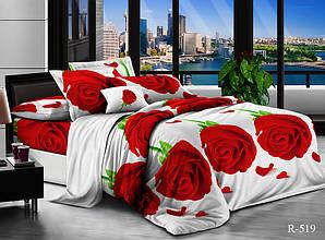 Двуспальный Евро комплект постельного белья Ранфорс  R519