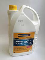 Антифриз (концентрат) Ravenol Protect C11 (5l) , фото 1