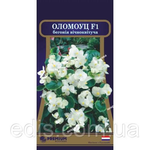Бегония вечноцветущая Оломоуц F1 10 семян в оболочке, PREMIUM Яскрава
