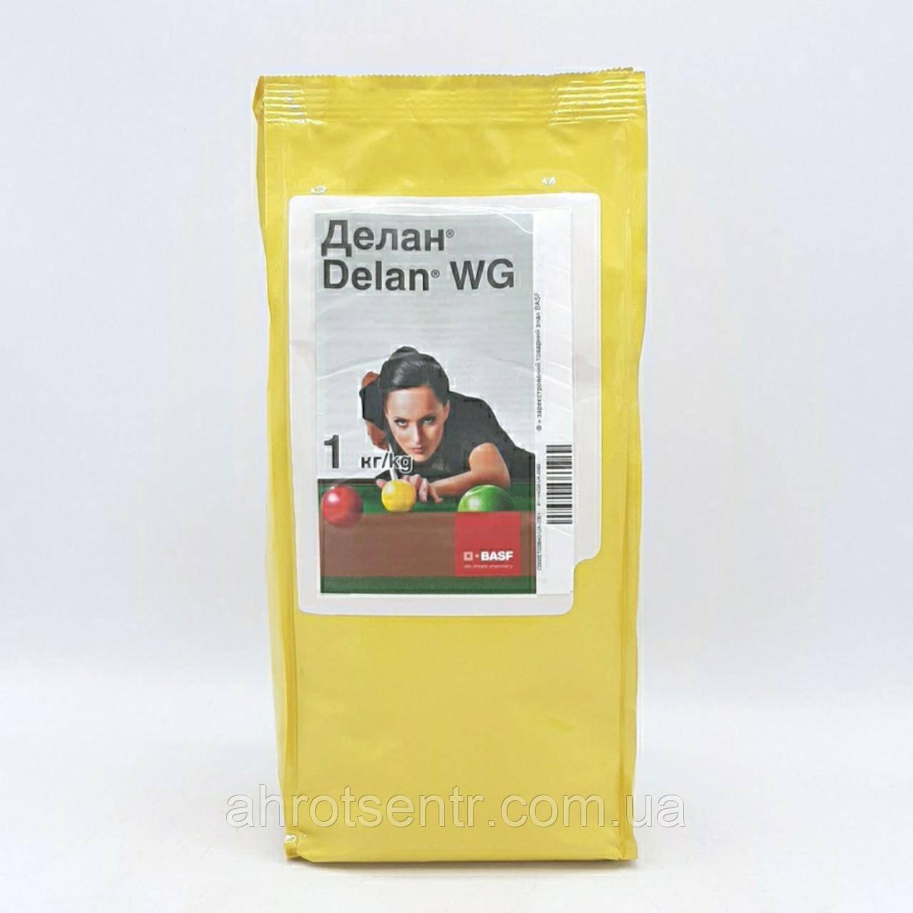 Фунгицид Делан 1 кг BASF Басф Германия