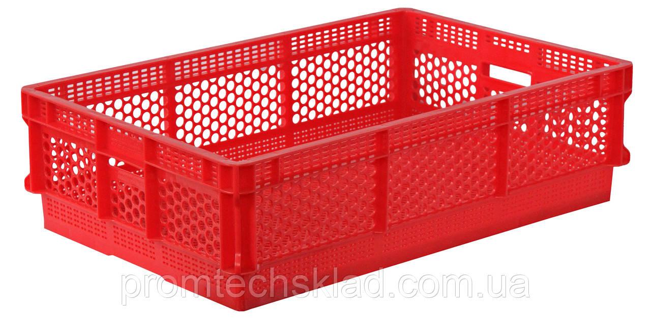 Ящик пластиковый 600х400х160 цветной