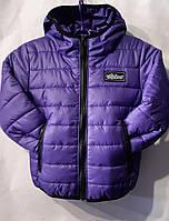"""Куртка дитяча демісезонна BOOM на хлопчика 92-116 см """"BENTLEY""""купити недорого від прямого постачальника"""