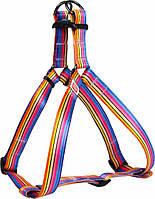 5056 Collar WauDog Nylon Лінія 1 нейлонова шлея, 60-90см/25мм