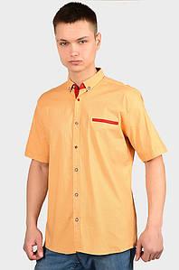 Рубашка мужская оранжевая AAA 128934P