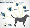 Нашийник для собак від бліх, кліщів , регульований, фото 2