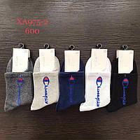 Шкарпетки чоловічі середньо-високі р-ри 40-45 (1уп-10 пар) кольору міксом