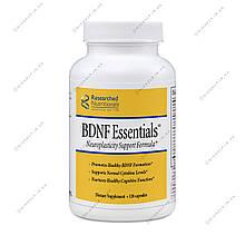 BDNF Essentials, Формула поддержки нейропластичности 10 капс. Researched Nutritionals