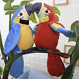 Інтерактивна іграшка мовець Папуга повторюшка М'яка іграшка папуга повторюха, фото 2