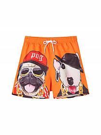 Чоловічі пляжні короткі шорти