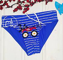 Плавки для плавания для мальчика Teres голубые и синие Размеры 110-116 110, голубой