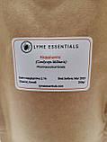 Кордицепс (Cordyceps Militaris) Порошок Мицелия 200 грам, фото 2