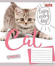 А5/48 лін. 1В CAT, зошит для записів, фото 2