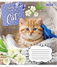 А5/12 кос. 1В CATS, зошит учн., фото 2